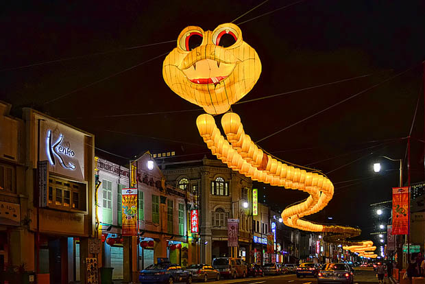 snakesingapore2-couv
